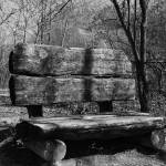 """Old Park Bench"" by madworld"