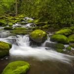 """Great Smoky Mountains National Park River Paradise"" by DAPhoto"