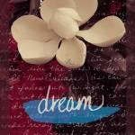 """Magnolia"" by sidneysstudios"