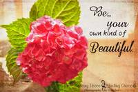 Be Your Own - Hydrangea