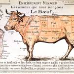 """Beef: diagram depicting the different cuts of meat"" by fineartmasters"