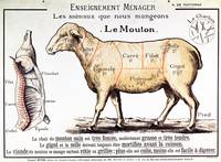 Mutton: diagram depicting the different cuts of me