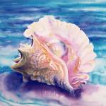 """conch14x20"" by savanna"