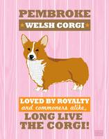Pembroke Welsh Corgi No Flag Pink/Org