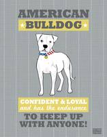 American Bulldog Flag Gray/Gold