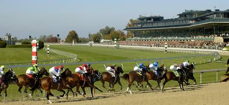 Thoroughbred Horse Race - Stretching Out the Pack