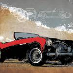 """Austin Healey 100"" by getshaped"