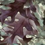 """""""Leafy"""" by LJArt"""