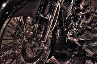 Harley Davidson In Detail