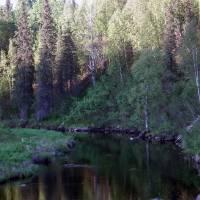 Peters Creek Alaska Art Prints & Posters by Birthday Gifts