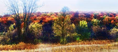 Wisconsin Fall Roadside Panorama
