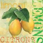 """""""Froyo Lemons"""" by DebbieDeWitt"""