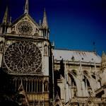 """""""Notre Dame de Paris"""" by LeeMcFarlanePhotography"""