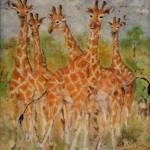 """African Giraffes"" by DCHeslin"