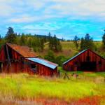 """""""Summer Barn"""" by maureenmarieltd"""