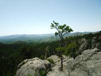 The Black Hills of South Dakota