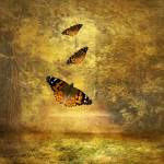 """""""Fly Away"""" by JessicaJenney"""
