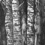 """Aspens"" by karaholmstrom"