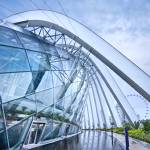 """Singapore Garden by the Bay Flower DOME"" by Tomatoskins"