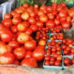 """Tomatoes for Sale"" by susansartgallery"