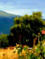 Photography Art Greeting Card LANDSCAPE
