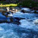 """Truckee River"" by cwtrumpet"