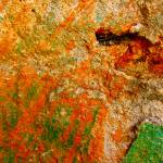 """""Green and Orange Abstract"""" by AlexandraZloto"