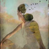 Summer Dreaming Art Prints & Posters by Catrin Welz-Stein