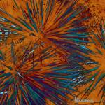 """Yucca in Abstract"" by Attentiongetters"