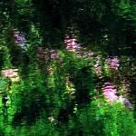 """Giverny Spirit XIII"" by Woodsman"