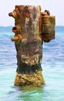 Rusted Dock Pier of the Caribbean II