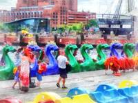 Dragon Boat Baltimore MD