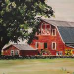"""Rhode Island Red Barn"" by skippatuffson"