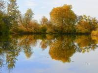 The Reflections Of Autumn