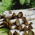 """Austrian Log Stack"" by johnbowers"