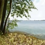 """""""Sandusky Bay"""" by ShawnaRowe"""
