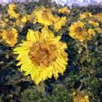 """Sunny Flowers"" by ArtbyDesign"