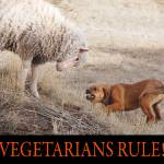 """vegetarians rule--my lamb and dog"" by rchristophervest"