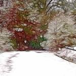 """""""Winter is Calling"""" by LJArt"""