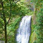 """Multnomah Falls 4"" by twostarphotography"
