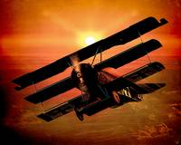 The Bloody Red Baron's Fokker at Sunset