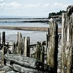 """Wharf Remains"" by CCYPhotography"