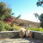 """""""Amphorah garden"""" by kos29"""