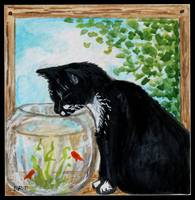 The Tuxedo Cat and the Fish Bowl