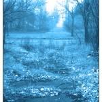"""BLVD Blue Alley"" by michaelvanderpool"