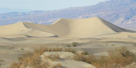 Dunes in Death Valley