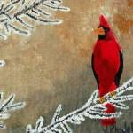"""Cardinal Bird In Winter"" by KessingerKlassics"