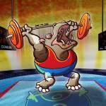 """Olympic Weightlifting Hippopotamus"" by Zooco"