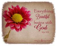 Beautiful Begins
