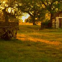 Country Sunset Art Prints & Posters by Timothy Huchton